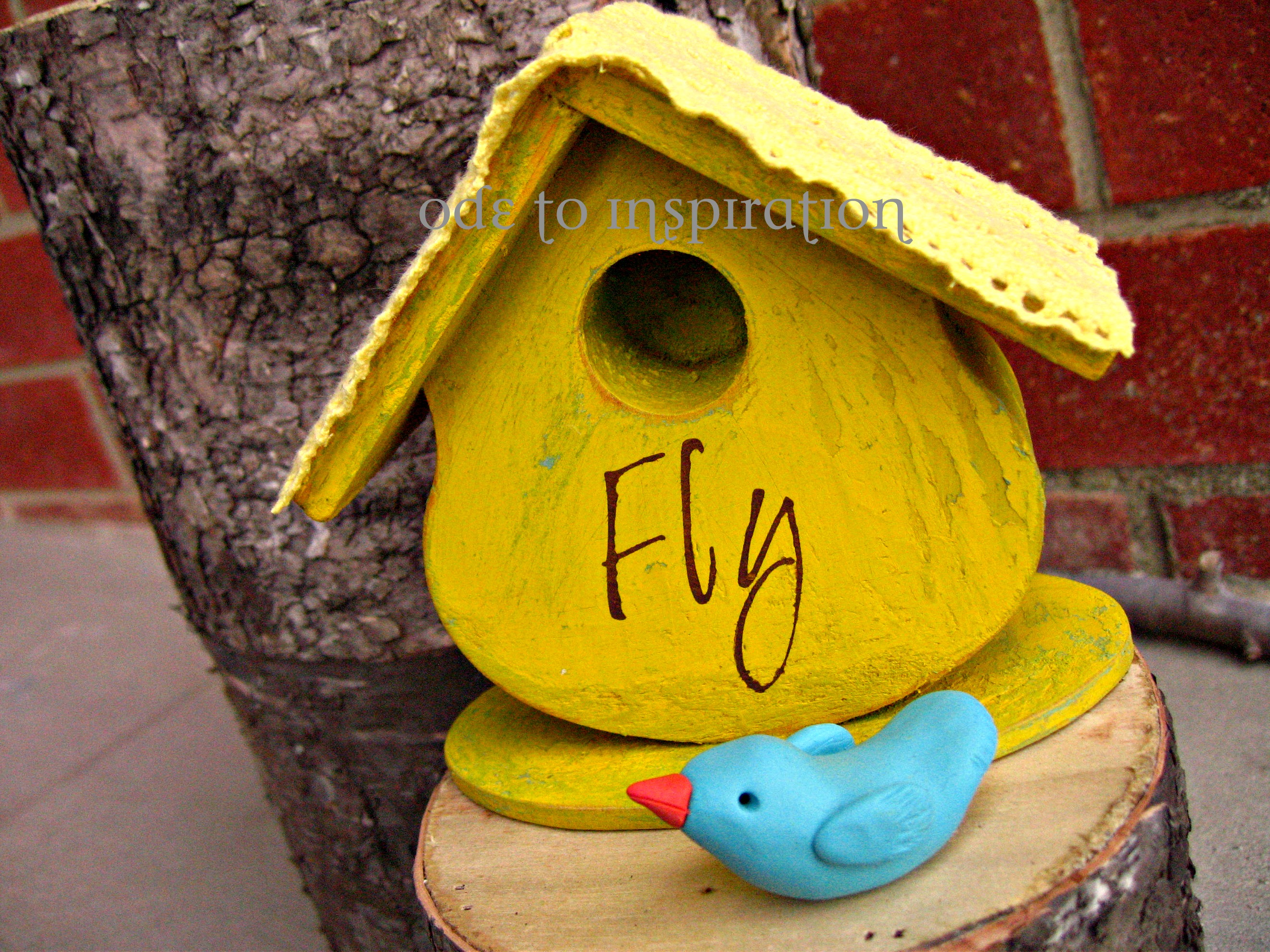 bird house plans colorado